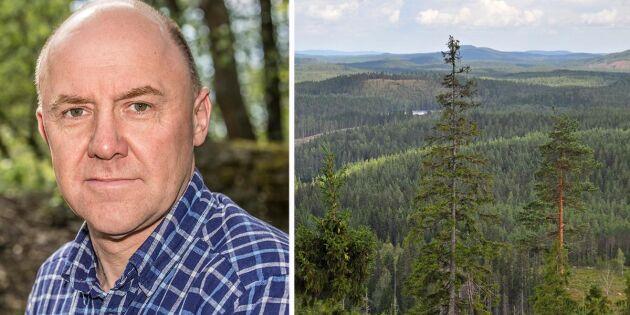 Handlingsplan saknas i skogsstrategin