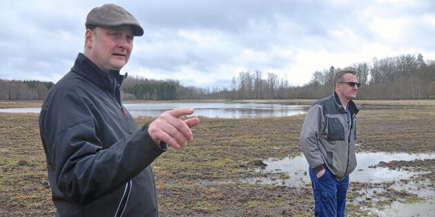 Stoppar översvämningar med diken och dammar