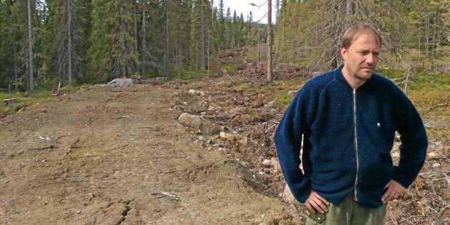 Avverkningen stoppades – skogen blev nyckelbiotop