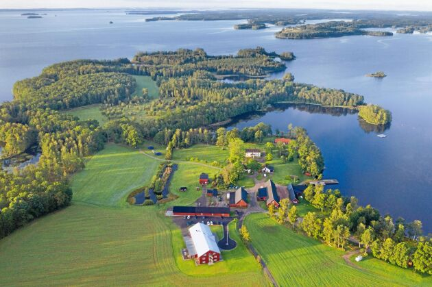Gården Tiraholm domineras sedan 60 år tillbaks av fiske och skogsbruk. Men nu har nötkreaturen återkommit i form av röda Anguskor med kalvar som håller naturbetesmarkerna öppna.
