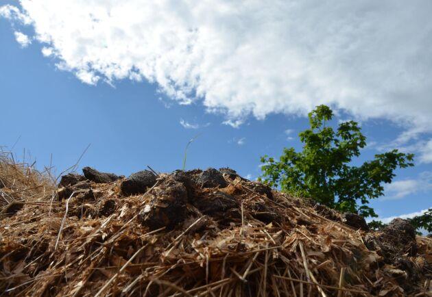 Hästhållningen riskerar hårdare regler för miljötillsyn, till exempel kring gödseln, än andra områden. Det kan få konsekvenser för näringen, anser Jordbruksverket.