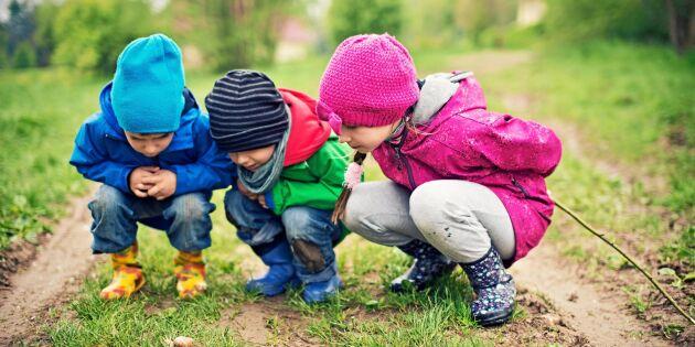 Dansk forskning: Grön uppväxt skyddar mot psykisk ohälsa