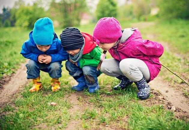 Gröna miljöer i barndomen verkar minska risken för psykisk ohälsa senare i livet.