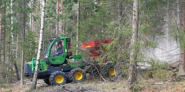 ATL TV: Kulor kan ge mer aska i skogen