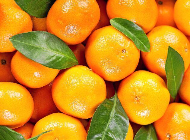 Lär dig vilken citrusfrukt som är vilken – en gång för alla.