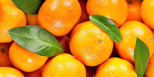Så heter citrusfrukten – du har förmodligen sagt fel hela livet