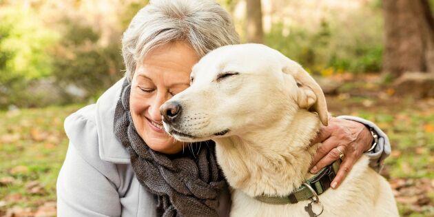 Så håller du hunden frisk – 9 tips från veterinären!