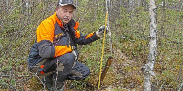 Mineraljakt kan kosta skogsägare miljoner