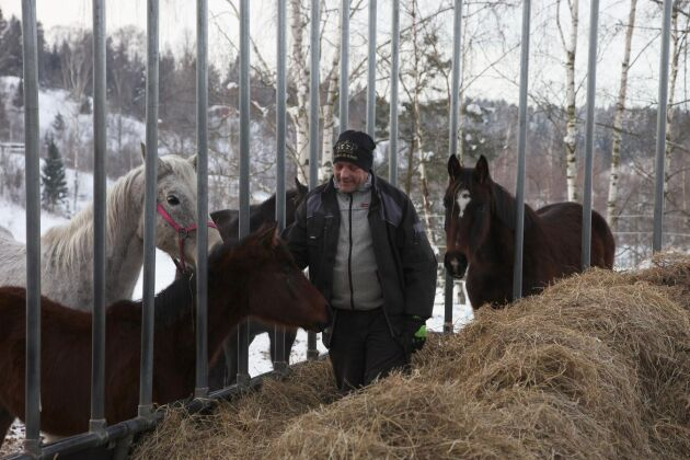 Stallägaren René Flück vill ha ett totalstopp av den typen av anläggningar som började brinna i Kagghamra, bara några hundra meter från hans stora hästgård.