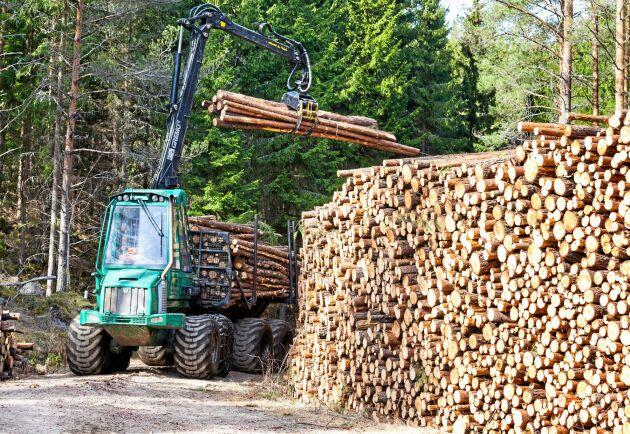 Skogen ska brukas så att växt- och djurarter ges förutsättningar att fortleva.