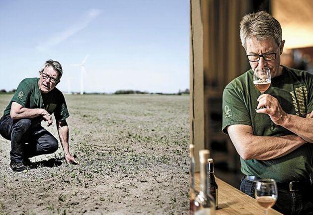Claes Wernersson granskar råg som ska användas i öltillverkningen.
