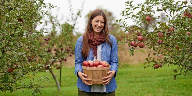 Därför är det bra för hälsan att äta hela äpplet – även skrutten