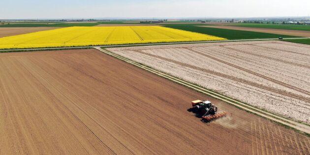 Oro i Centraleuropa för ny torksommar