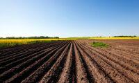 FAO: Så måste maten produceras i framtiden