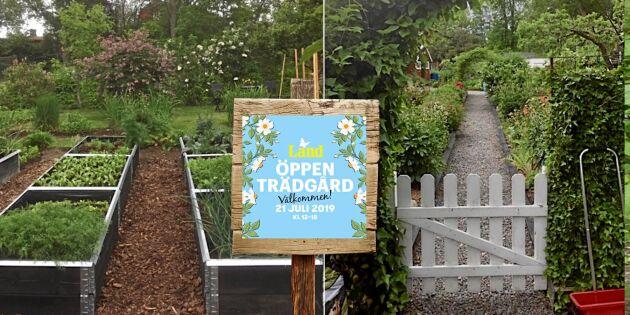 Västervik slår rekord med Öppen Trädgård – 150 trädgårdar bjuder in