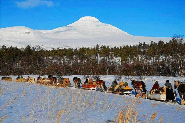 Den årliga turen till norska Röros med Dalarna Femund forkörarförening.