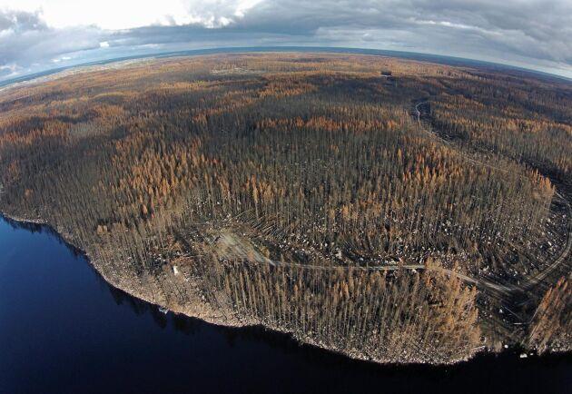 En flygbild i oktober 2014 visar omfattningen av den stora brand som hade härjat i Västmanland bara några månader tidigare.