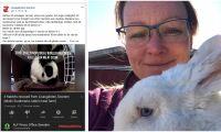 Aktivister stal avelskaniner från Lisasgården