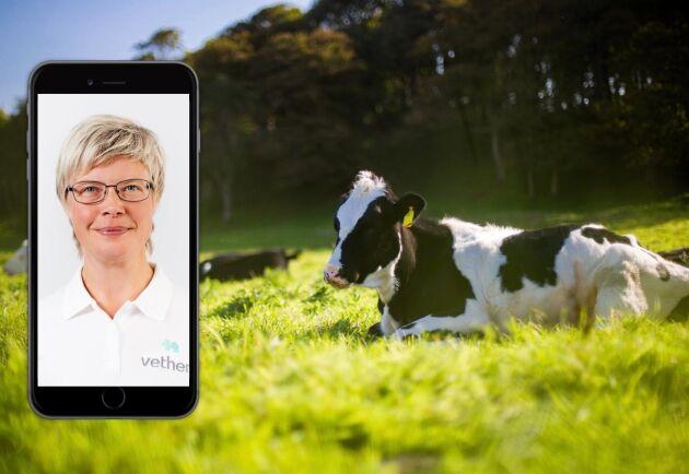 Ett nytt samarbete mellan LRF Media och Vethem ger nu alla LRF:s medlemmar och prenumeranter på medlemstidningarna Land och Land Lantbruk en möjlighet att välja digital vård för lantbruksdjur hos Vethem till ett rabatterat pris.