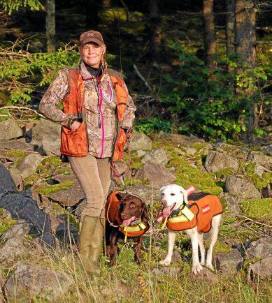 Åza Vikström med vildsvinshundarna Choo och Snö som alltid bär väst under jakt.