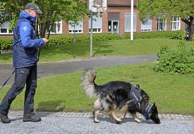 Schäfern Jim är till vardags norsk räddningshund i Osloområdet där han är behjälplig med att hitta försvunna personer. Nu utbildas han och föraren Öystein Ramseng för att bli ett ännu vassare spårekipage.