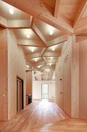 KL-trä består av flera lager korslimmade brädor som bildar stora skivor. Skivorna kan sen användas som väggar eller bjälklag vid byggande.