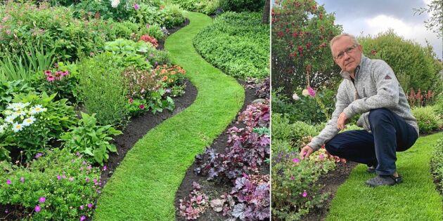 Så gör du gräsgröna gångar i trädgården – på Håkans vis
