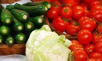 Större jordbruksimport än export