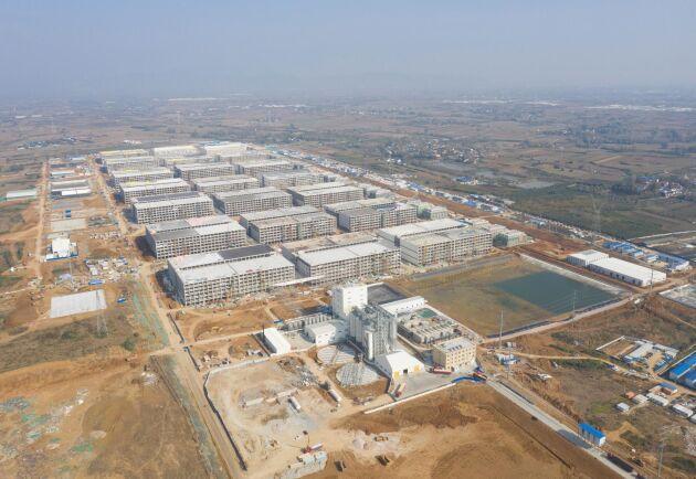 Muyan Foods nybyggda grisanläggning i flera våningar i Neixiang i Henanprovinsen, platsen där Qin Yinglin grundade företaget. Fotot taget i november 2020.