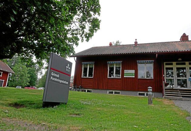 Ett 40-tal personer jobbar på Grimsö Forskningsstation.