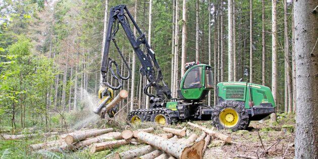 Trenden: Lönsamheten i skogsbruket sjunker