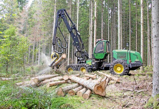 Lönsamheten i skogsbruket sjunker. Arkivbild.