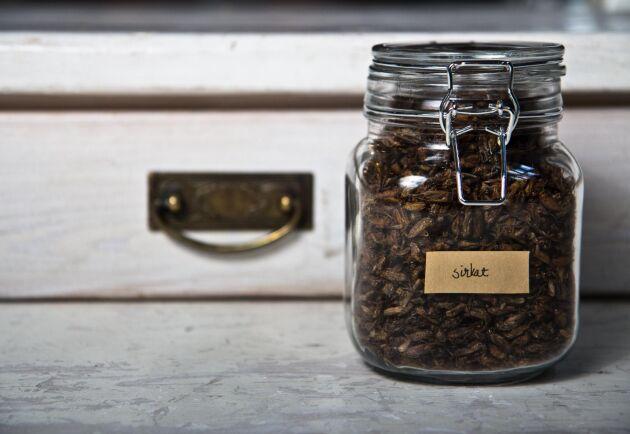 Insekter är ännu inte formellt godkända som livsmedel i EU. Ändå får vissa enskilda länder i unionen tillåta försäljning av insekter som livsmedel, i väntan på ett eventuellt godkännande över hela EU. I Sverige är dock insekter fortsatt förbjudna att sälja som livsmedel.
