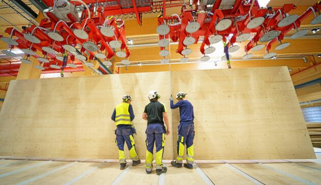 CLT-produkterna från Gruvöns sågverk är 16 meter långa och 3,5 meter höga.