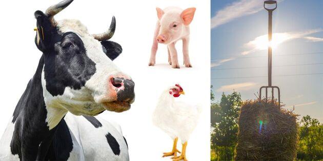 Sju bönder nominerade till klimatpris