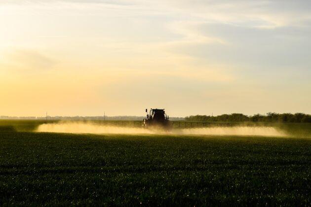 Växtskyddsmedel med glyfosat är förbjudet i hela Brysselregionen.