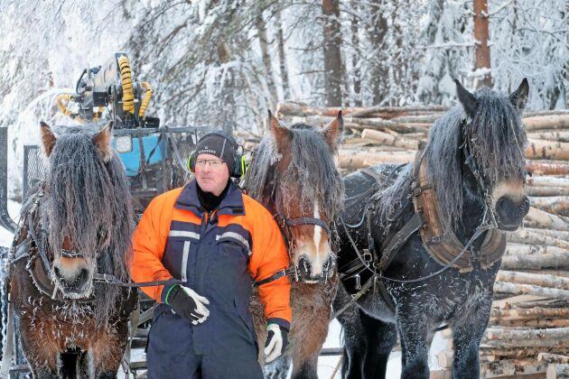 Hans-Olof med hästarna Palt, Vilmer och Dacke.