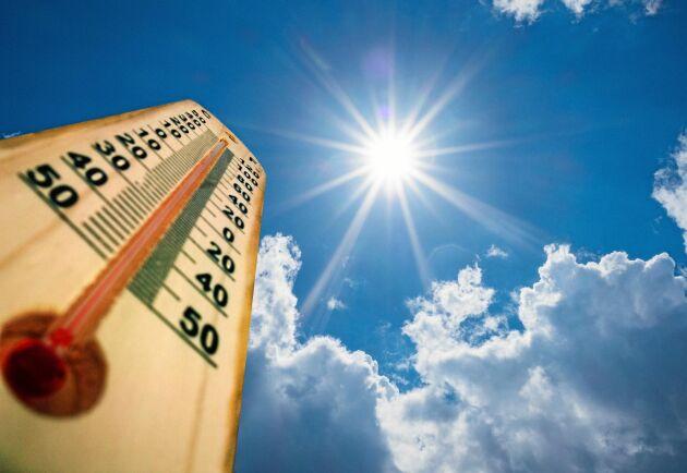 Vi kan räkna med att de höga temperaturerna fortsätter.