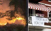 Oväntade effekten av enorma skogsbranden