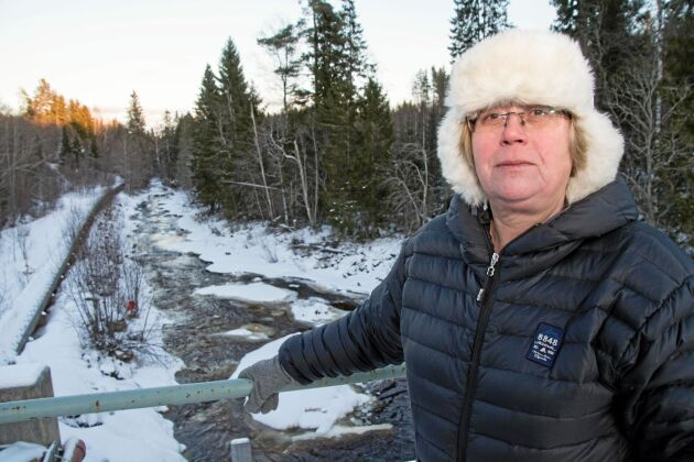 Carina Ohlson (C) är ordförande i kommunägda Nordanstigs vatten AB. Från att tidigare stött projektet har hon blivit allt mer tveksam till vilka konsekvenser som dammrivningarna kan få för grundvattnet.