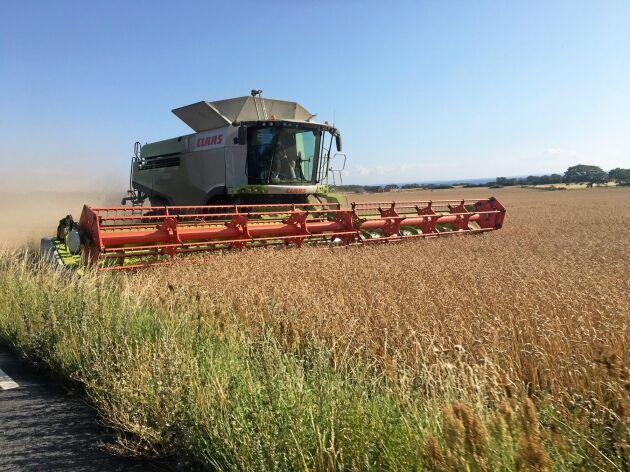 Tyska maskintillverkaren Claas finns med i det nya expansionspaket till Farming Simulator som släpps i oktober.