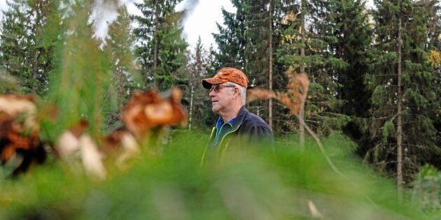 Skogsentreprenörer en del av lösningen vid skogsbränder