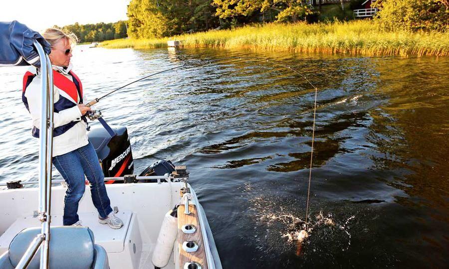SMIT INTE. Kajsas abborre försöker skaka sig loss vid båtkanten.