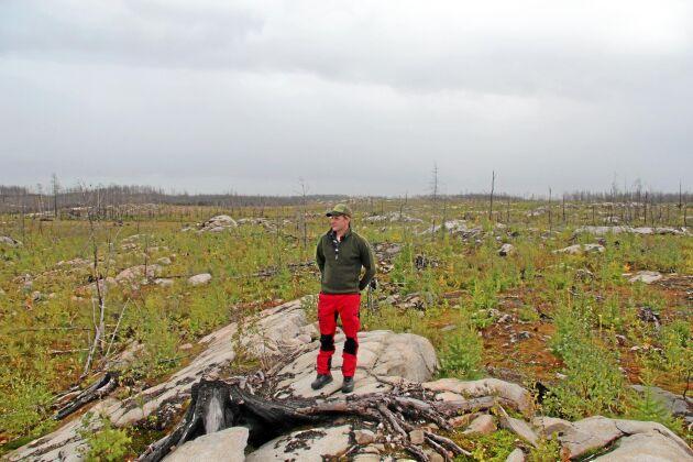 """... I dag, fyra år efter branden, känner Oskar Axfeldt en stark odlarglädje när han inspekterar brandhygget. """"Man skapar något för framtiden och man ser att det snabbt händer saker. Det tycker jag är det roligaste i skogsbruket"""", säger han."""