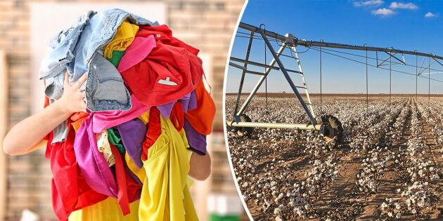 Så dåliga är dina kläder för miljön