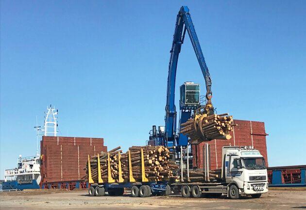 Fram till sommaren planeras utskeppning med en båt per vecka från Hargs hamn för att snabbt få stormvirket till industrin.