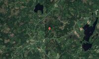 Ny ägare till skogsfastighet i Skåne i april