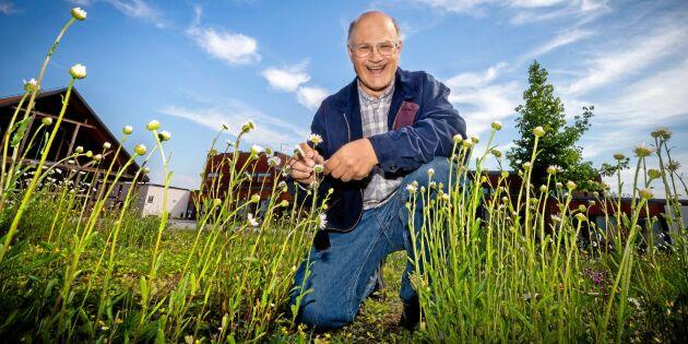 Svenska bönder kan rädda biologisk mångfald