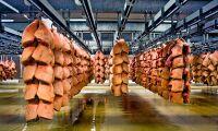 Toppnotering på dansk gris fyra veckor framåt