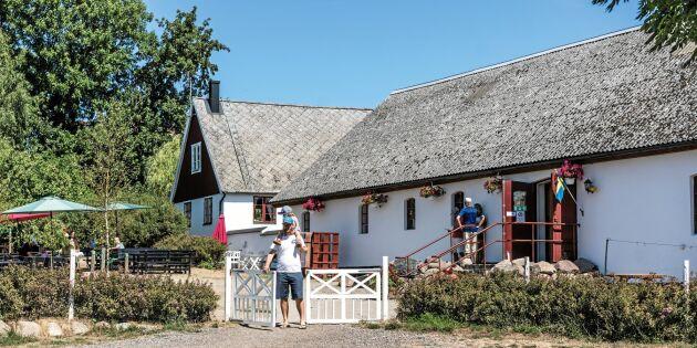 Svenska gårdar du kan besöka – upplevelser för hela familjen